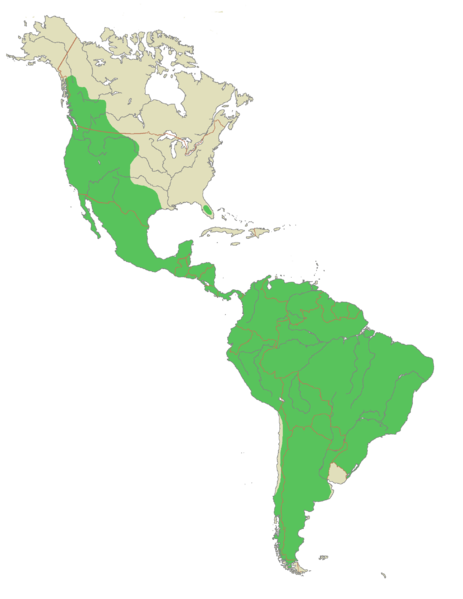 map of guyana showing mountain ranges